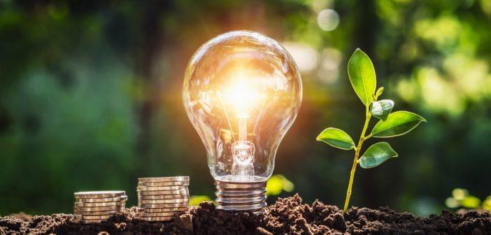 Taxes énergétiques et optimisation fiscale